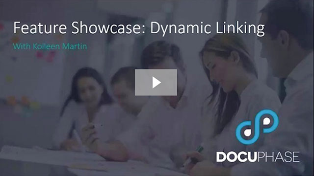 Feature Showcase Dynamic Linking
